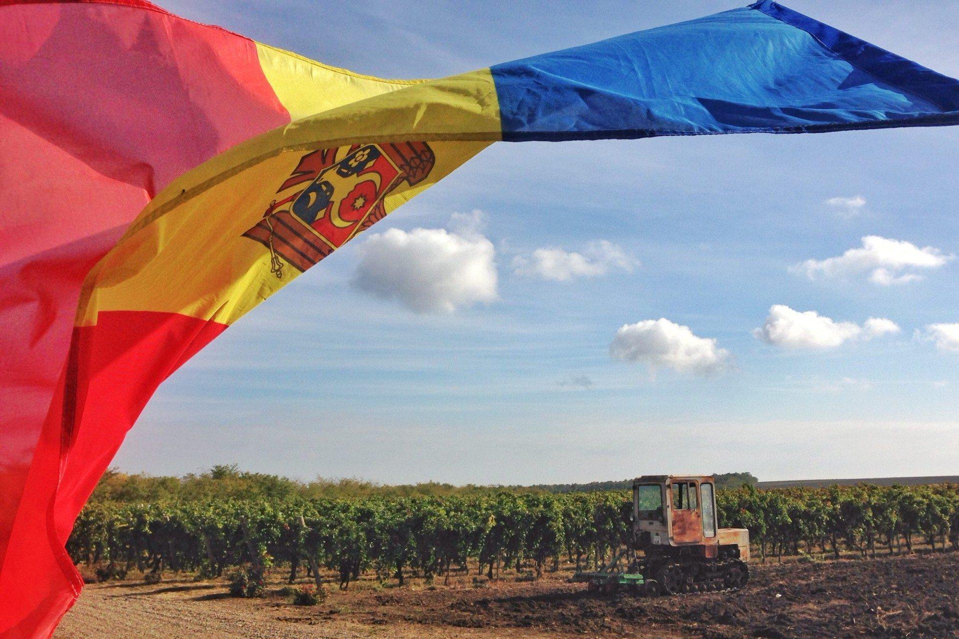 Wat maakt Moldavische wijn zo bijzonder? Naast de goede terroir is het wijn maken een onmiskenbaar deel van de Moldavische samenleving. Vele huizen op het platteland hebben een eigen wijnkelder. Elke generatie wordt grootgebracht met de traditie van wijn maken. Naast moderne productiemiddelen, wordt er nog veel met de hand en traditionele productiemethodes gewerkt.